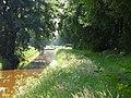 Gassel, Tongelaar, le canal anti-tank.JPG