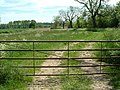 Gate and footpath - geograph.org.uk - 441306.jpg