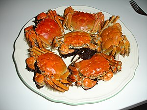 Chinese mitten crab - Hairy crab as Shanghai cuisine