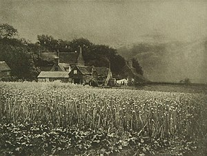 George Davison (photographer) - George Davison – The Onion Field (1890)