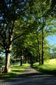 Gersfeld Gersfeld Avenue Hiking Path Wasserkuppenrundweg RK N Schlosspark.png
