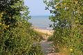 Gfp-wisconsin-fischer-creek-state-park-through-the-trees.jpg