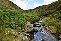 Glenleith Burn. - geograph.org.uk - 1407270.jpg