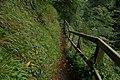 Glenoe glen (4) - geograph.org.uk - 250551.jpg