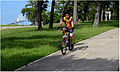 Goose Creek Trail cyclist.jpg