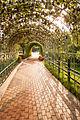 Gourd trellis Seonam Lake Park, Ulsan.jpg