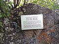 Grab von Eva und György Sebők.jpg