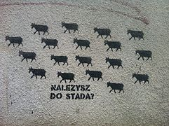 Graffiti Należysz do stada?