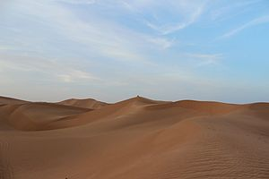 Grand Erg Occidental - The desolate landscape of the Grand Erg Occidental near Timimoun