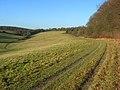 Grassland below Bellingdon - geograph.org.uk - 1081233.jpg