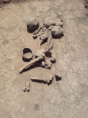 Maeotians - A Maeotan skeleton from the burial ground near Lenin Farm, Krasnodar region, Russia; 4th to 2nd century BC