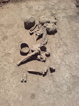 Grave field - A maeotae skeleton of the burial ground near Farm of Lenin's Name, Krasnodar region, Russia 4th to 2nd century BC