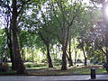 Green Space by Euston Station 1.jpg
