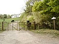 Greeted by a cow at Woodcroft Farm - geograph.org.uk - 422654.jpg
