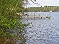 Gruenau - Langer See (Long Lake) - geo.hlipp.de - 35716.jpg
