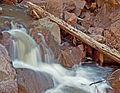 Guadalupe River (3679937716).jpg
