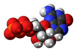 Guanosine-diphosphate-anion-3D-spacefill.png