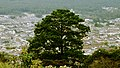 Guatemala - Antigua - panoramio (9).jpg