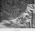 Guatemala land quetzal Brigham 1887 22.jpeg