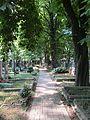 Hřbitov Záběhlice 10.jpg