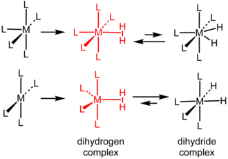Dihydrogen complex - Formation and equilibrium structures of metal dihydrogen and dihydride complexes (L = ligand).
