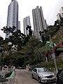 HK 半山區 Mid-levels 堅巷花園 Caine Lane Garden green leaves February 2020 SS2 14.jpg