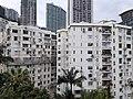 HK ML 半山區 Mid-levels 波老道 Borrett Road February 2020 SS2 08.jpg