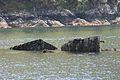HMS Port Napier wreck 6.jpg