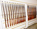 HMS Warrior Rifles.jpg