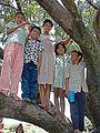 HN999sRamon 5Kids+tree.jpg