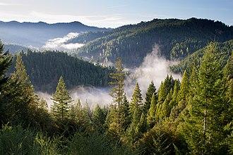 Hales Grove, California - Image: Hales Grove, United States (Unsplash)