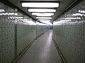 Hallway to Nowhere (3098664168).jpg