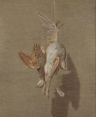 Mary Linwood - Hanging Partridge