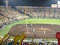 Hanshin Koshien Stadium 2009 (1).jpg