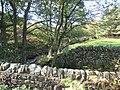 Harthope Beck - geograph.org.uk - 269510.jpg
