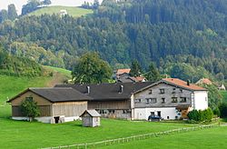 Haslen Bauernhaus Ulrichlis von Nord.JPG