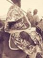 Hausa royal dressing 11.jpg