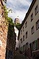 Heidelberg - panoramio (90).jpg