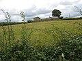 Hen Efail Farm - geograph.org.uk - 890437.jpg