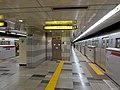 Hikarigaokastationplatforms-nov2014.jpg