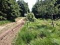 Hohes Venn - panoramio (2).jpg
