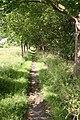 Holton Road footpath - geograph.org.uk - 499863.jpg