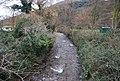 Horner Water - geograph.org.uk - 1658157.jpg
