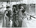 Horohoro Maori Training Farm, Milking (1966).jpg