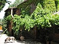 House and Dog at Casale a Poggiano - panoramio.jpg