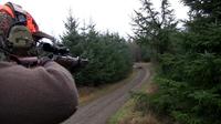 Hunter taking aim during a driven hunt Sweden 01.png