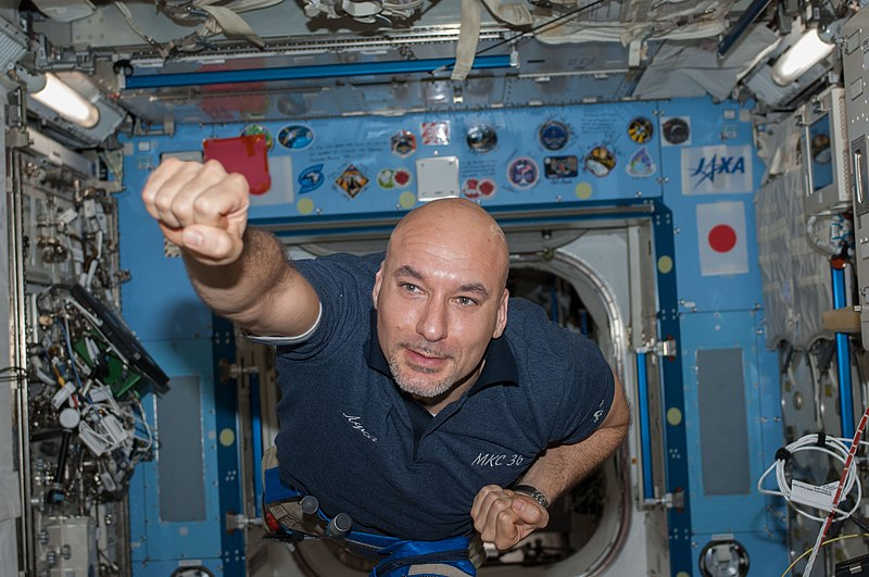 File:ISS-36 Luca Parmitano in the Kibo lab.jpg