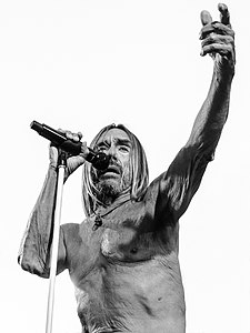 Iggy Pop at Burger Boogaloo.jpg