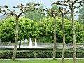 Im Schlosspark von Bad Bentheim - geo.hlipp.de - 10690.jpg