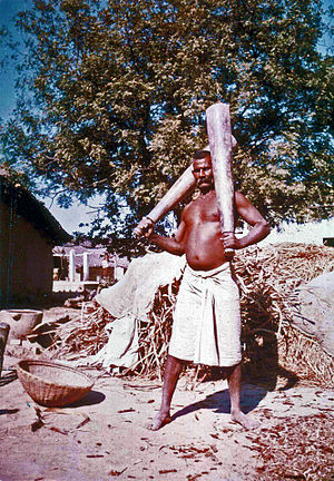 Pehlwani - An old Indian pehlwan exercising with Indian clubs near Varanasi.